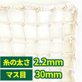 NET20s/60本/30mm